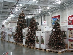 Christmas Trees Store