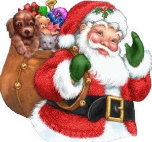 Santa Claus Rally 2013