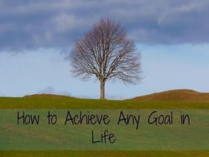 how to achieve any goal in life
