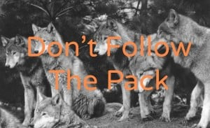 Follow The Pack